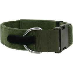 Dog Collar Chester